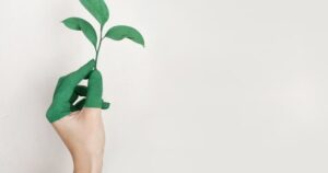 The Sustainable Plant: A Checklist for the Responsible Manufacturer